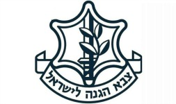 צבא הגנה לישראל